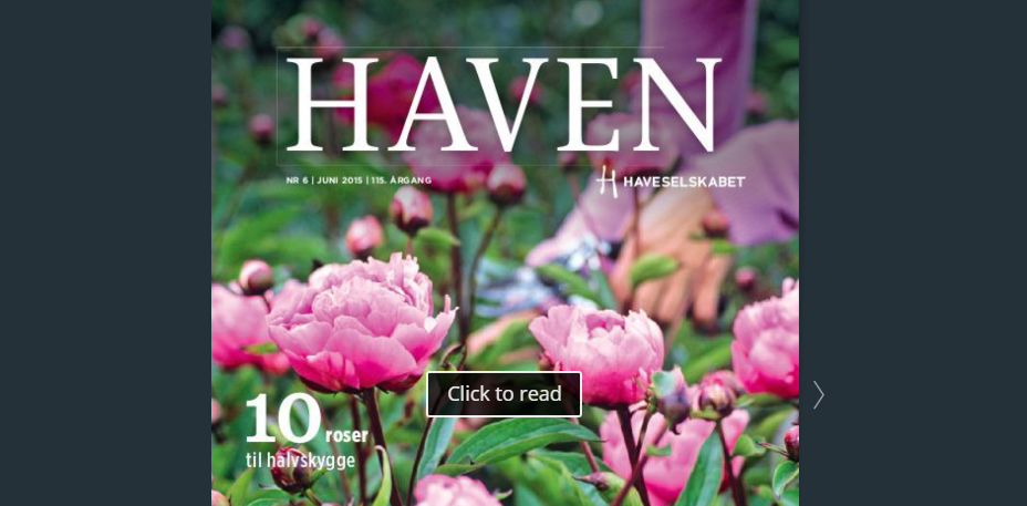 Magasinet HAVEN 6, 2015 online